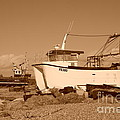 Dungeness Fishing Boats by David Fowler