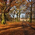 Dunham Massey by Louise Heusinkveld