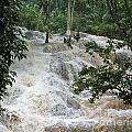 Dunns River Falls 2 by Nancy L Marshall