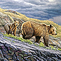 Dunraven Pass Grizzly Family by Paul Krapf