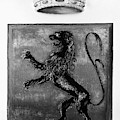 Duquesne Coat Of Arms by Granger
