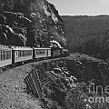 Durango Silverton Train by Brad Graves