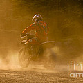 Dust And Dusk by Angel Ciesniarska