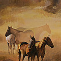 Dust Bowl by Bill Dunkley