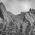 Dusted Flatiron In Black And White  by James BO Insogna