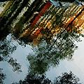 Dutch Canal Reflection by KG Thienemann