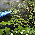 Dutch Lake by Brenda Kean