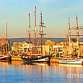 Dutch Tall Ships Docked by Bill  Robinson