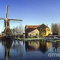 Dutch Windmill by Bob Phillips
