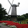 Dutch Windmill In Golden Gate Park by Christiane Schulze Art And Photography