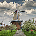 Dutch Windmill The Dezwaan On Windmill Island In Holland Michigan by Randall Nyhof