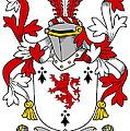 Dwyer Coat Of Arms Irish by Heraldry