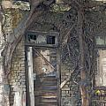 Dying Days Of An Old Building by Scott Lenhart