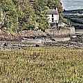 Dylan Thomas Boathouse At Laugharne 2 by Steve Purnell