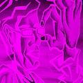 E Vincent Negative Purple by Rob Hans