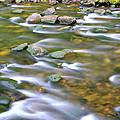 Eagle Creek Oregon by Ed  Riche