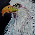 Eagle Eye by Jeanne Fischer