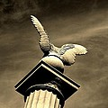 Eagle In Stone by Bob Geary