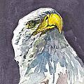 Eagle by Natalka Kolosok