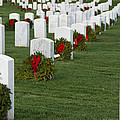 Eagle Point National Cemetery At Christmas by Mick Anderson