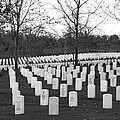 Eagle Point National Cemetery In Black And White by Mick Anderson