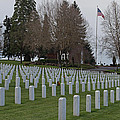 Eagle Point National Cemetery In Winter 2 by Mick Anderson