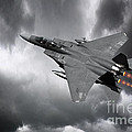 Eagle Power by J Biggadike