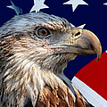 Eagle With Us American Flag by Thomas Woolworth