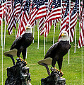 Eagles And Flags On Memorial Day by Mick Anderson