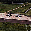 Eagles On The Ramp by Tommy Anderson