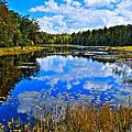 Early Autumn At Fly Pond - Old Forge Ny by David Patterson