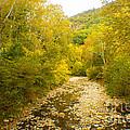 Early Autumn On Seneca Creek Wv by Howard Tenke