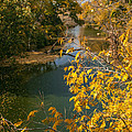Early Fall On The Navasota by Robert Frederick