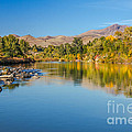 Early Fall On The Payette by Robert Bales