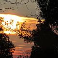 Early Feb 9 2013 Sunset by Tina M Wenger