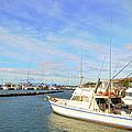 Early Morning At Maalaea Marina by Paulette B Wright