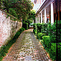Early Morning Charleston Sc by William Dey