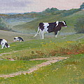Early Morning Holsteins by Judy Fischer Walton