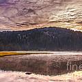 Early Morning Lake Light by Robert Bales