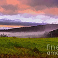 Early Morning Mist by Tom Gari Gallery-Three-Photography
