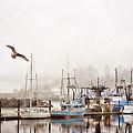 Early Morning Newport Oregon by Carol Leigh