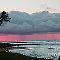 Early Morning Rain by Dana Kern
