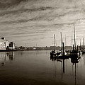 Early Morning River Suir, Waterford by Panoramic Images