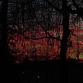 Early Morning Sunrise by Ericamaxine Price