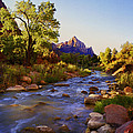 Early Morning Sunrise Zion N.p. by Rich Franco