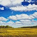 Early Summer Clouds by Leonard Heid