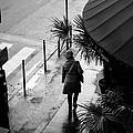 Early Walk by Cedric Lange