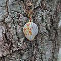 Earring In A Tree by Robin Vargo