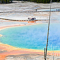 Earth Rainbow - Overhead View Of Grand Prismatic Spring In Yellowstone National Park.  by Jamie Pham