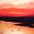Earth Swamp by Paul Meijering